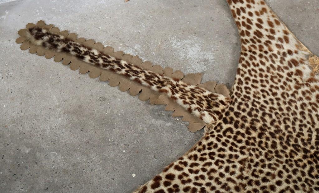 Antique leopard thumbnail